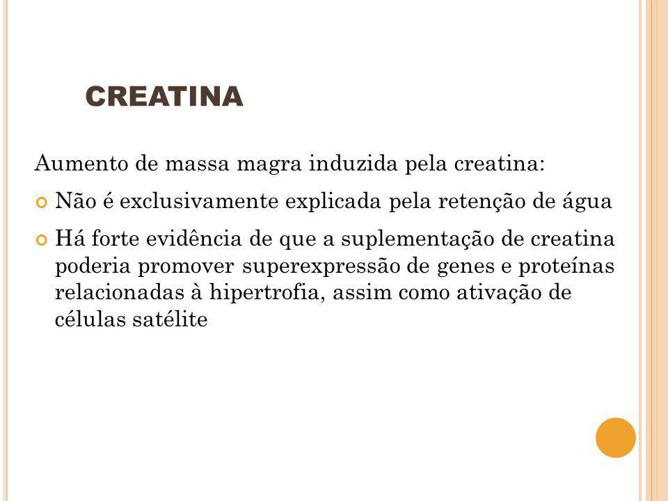 CREATINA Aumento de massa magra induzida pela creatina: