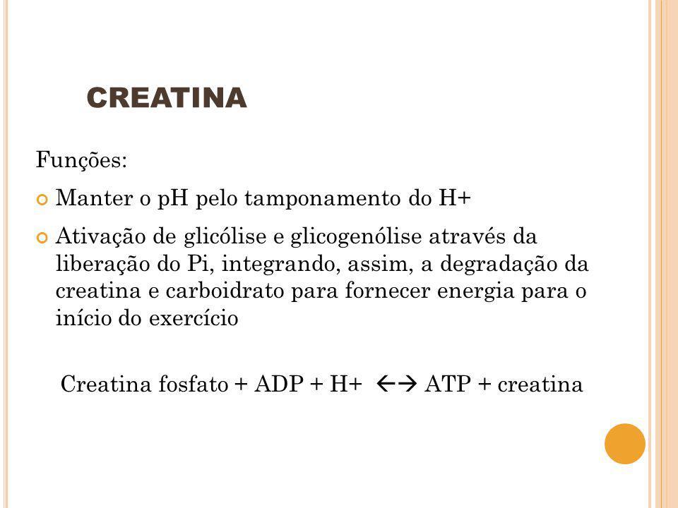 CREATINA Funções: Manter o pH pelo tamponamento do H+