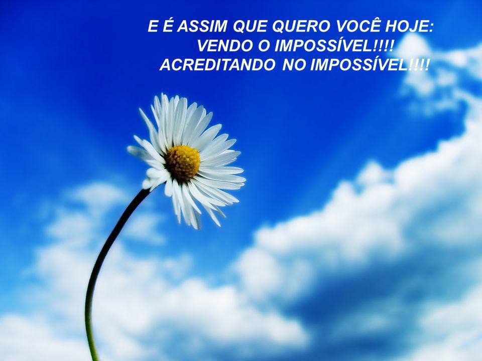 E É ASSIM QUE QUERO VOCÊ HOJE: ACREDITANDO NO IMPOSSÍVEL!!!!