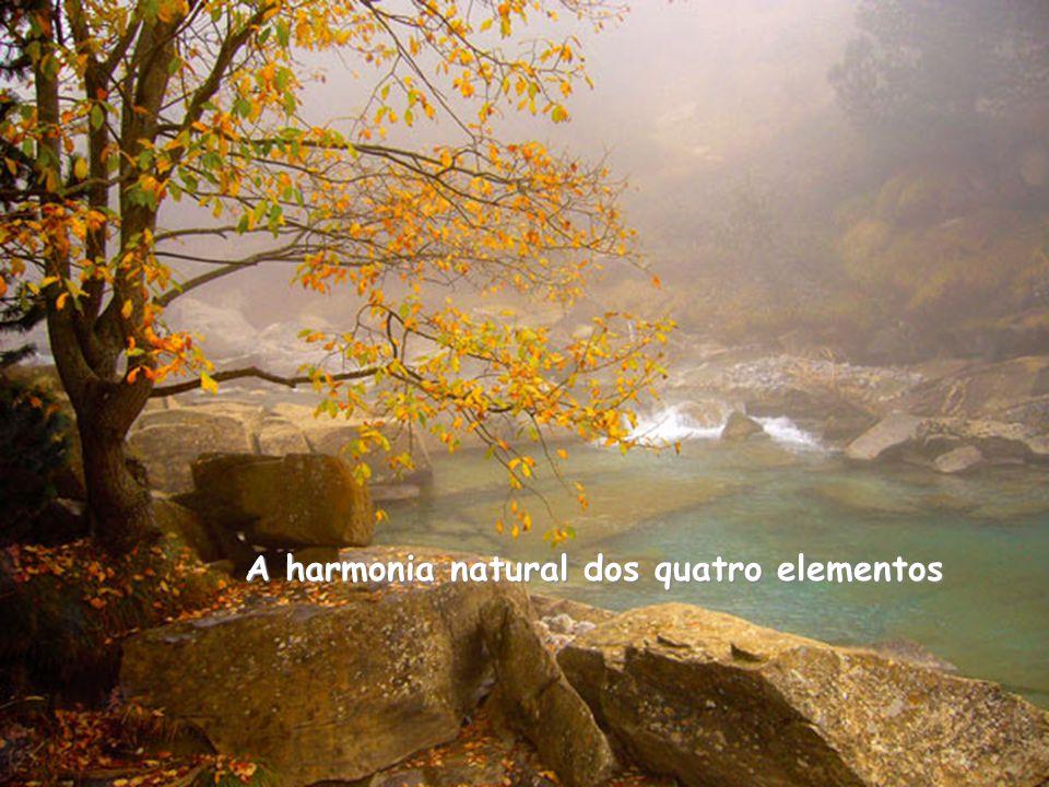 A harmonia natural dos quatro elementos
