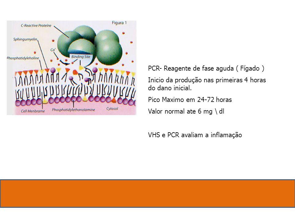 PCR- Reagente de fase aguda ( Fígado ) Inicio da produção nas primeiras 4 horas do dano inicial.