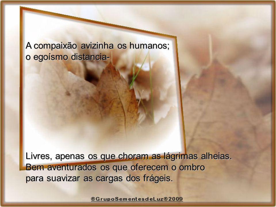 A compaixão avizinha os humanos;
