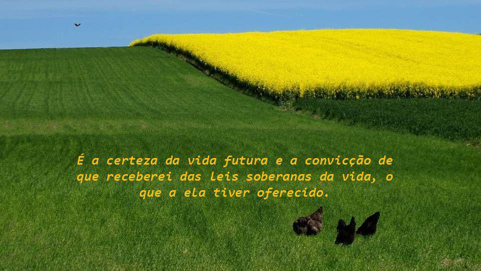 É a certeza da vida futura e a convicção de que receberei das leis soberanas da vida, o que a ela tiver oferecido.