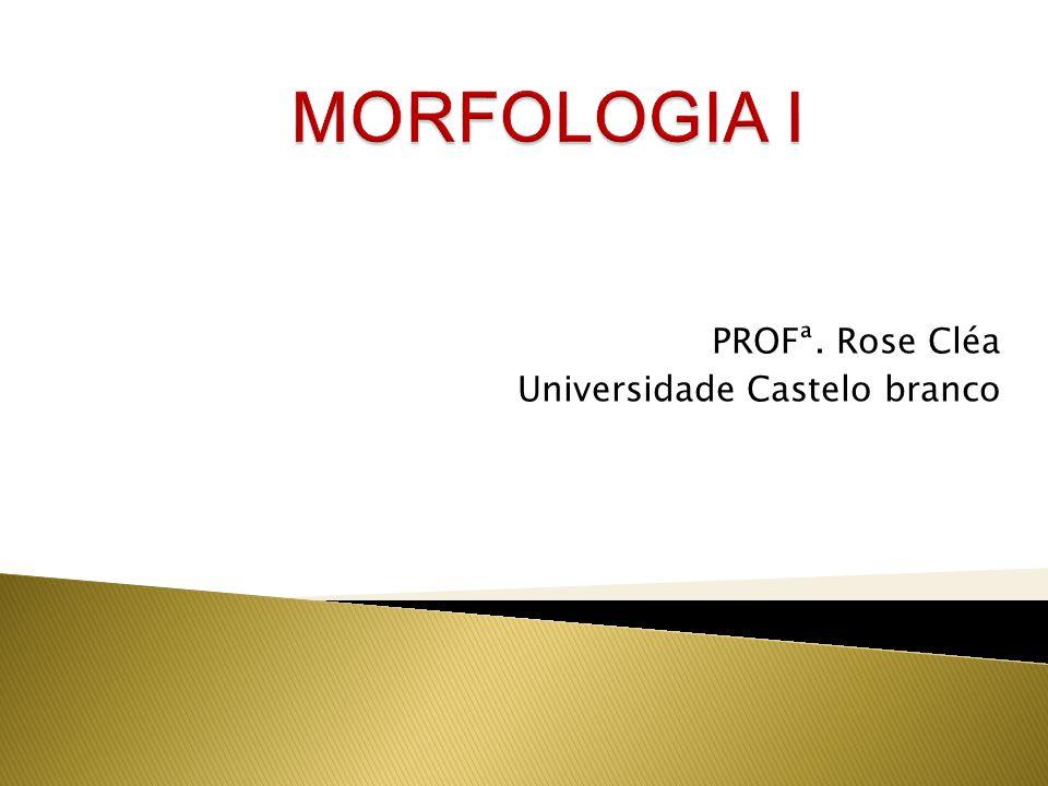 PROFª. Rose Cléa Universidade Castelo branco