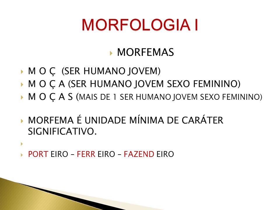 MORFOLOGIA I MORFEMAS M O Ç (SER HUMANO JOVEM)
