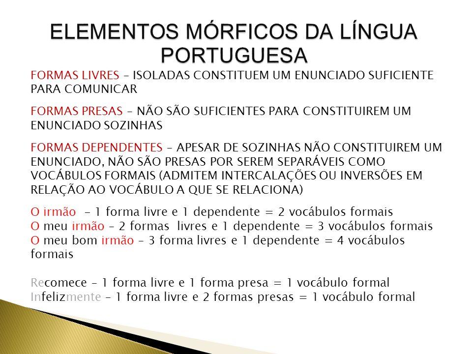ELEMENTOS MÓRFICOS DA LÍNGUA PORTUGUESA