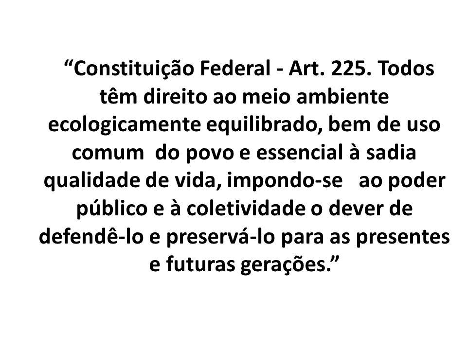 Constituição Federal - Art. 225