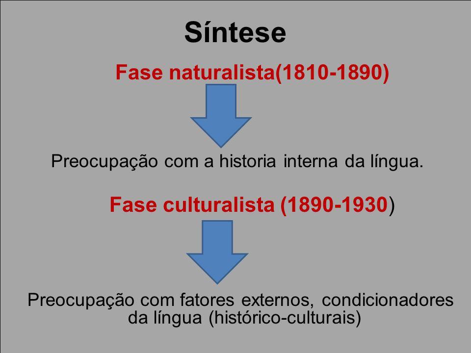 Preocupação com a historia interna da língua.
