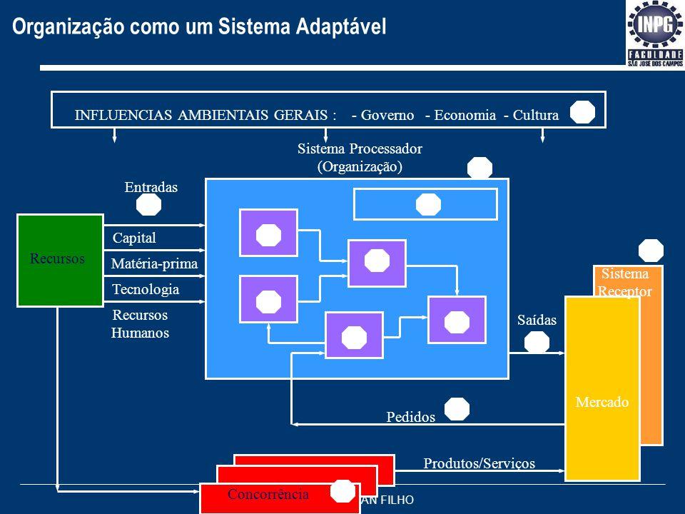 Organização como um Sistema Adaptável