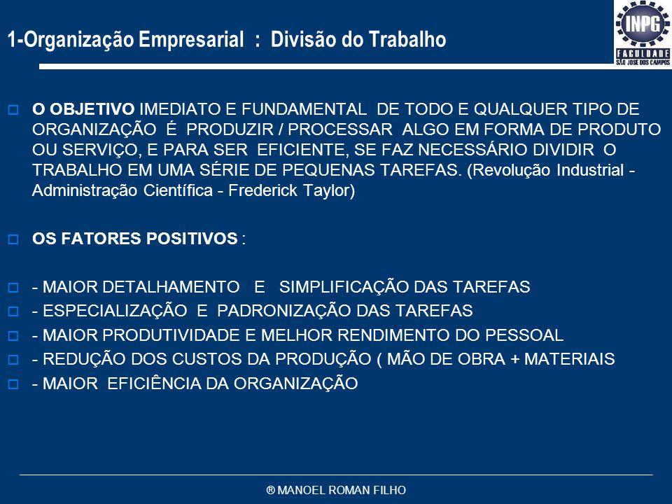 1-Organização Empresarial : Divisão do Trabalho