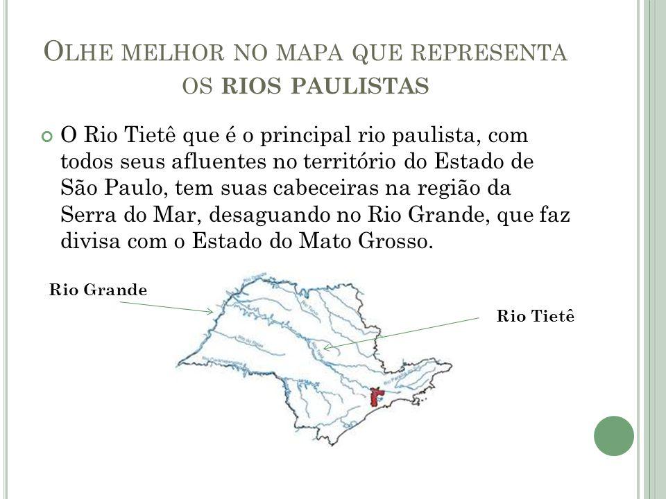 Olhe melhor no mapa que representa os rios paulistas