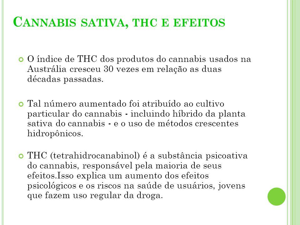 Cannabis sativa, thc e efeitos