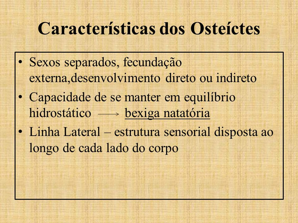 Características dos Osteíctes