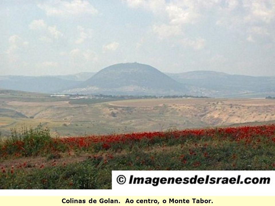 Colinas de Golan. Ao centro, o Monte Tabor.