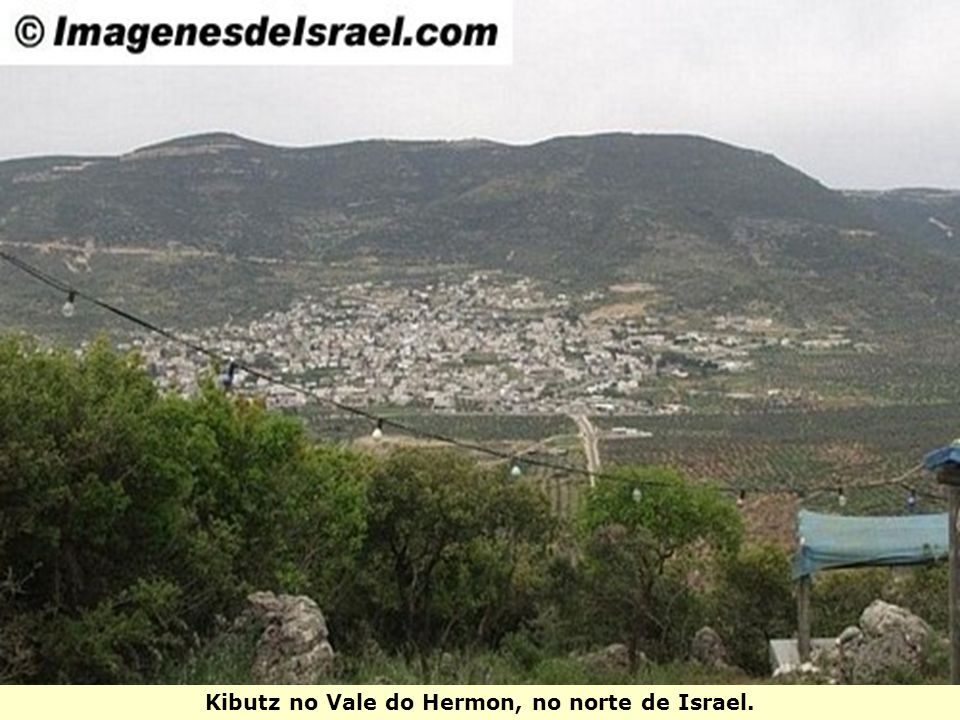 Kibutz no Vale do Hermon, no norte de Israel.