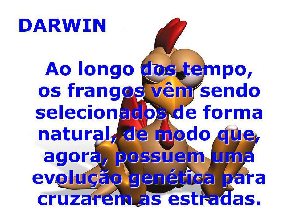 DARWIN Ao longo dos tempo,
