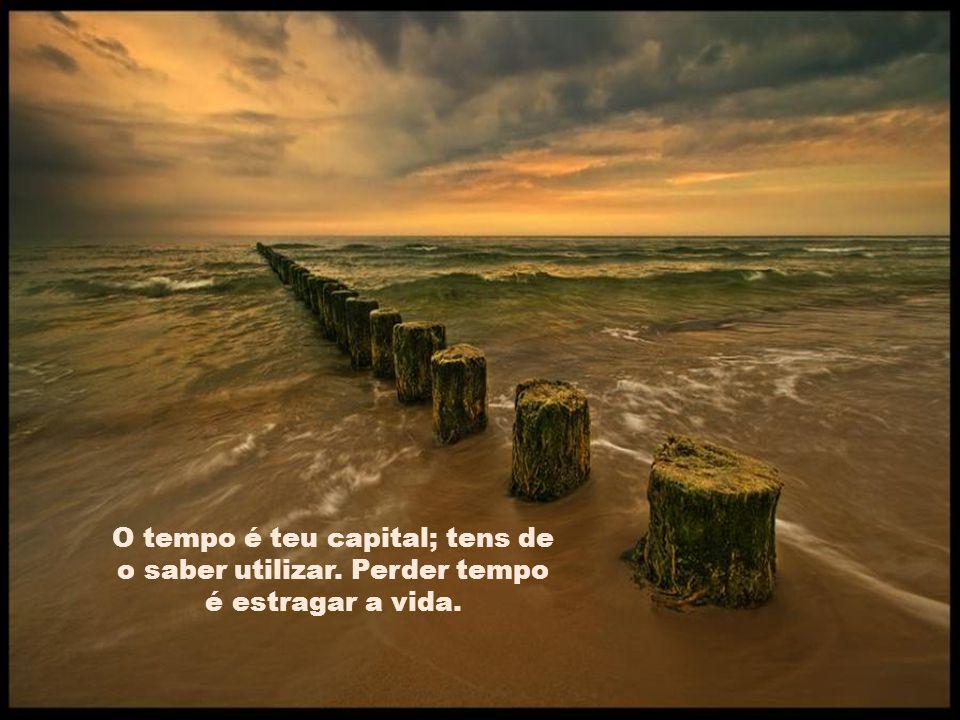 O tempo é teu capital; tens de o saber utilizar