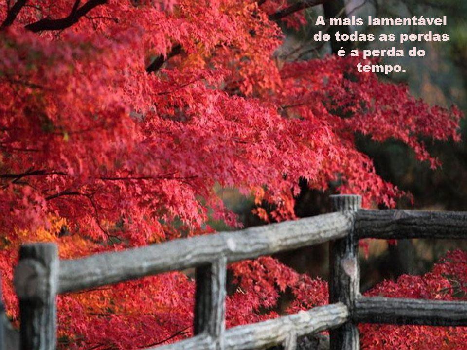 A mais lamentável de todas as perdas é a perda do tempo.