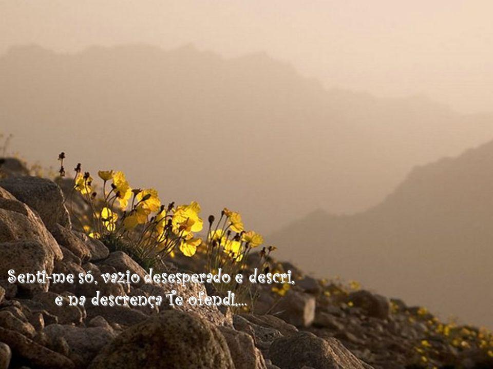 Senti-me só, vazio desesperado e descri, e na descrença Te ofendi,...