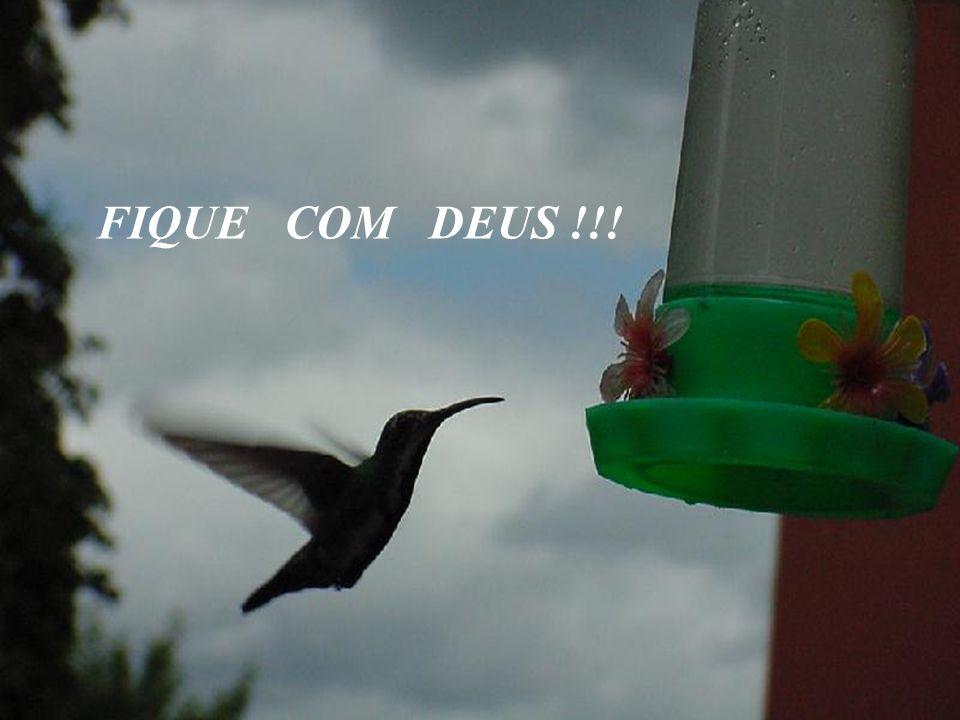 FIQUE COM DEUS !!!