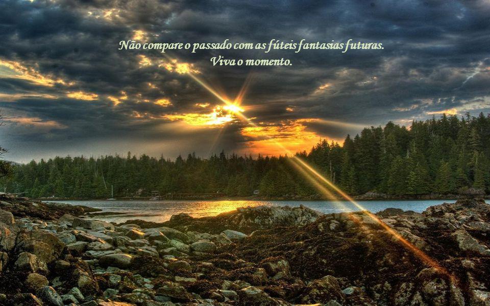 Não compare o passado com as fúteis fantasias futuras. Viva o momento.