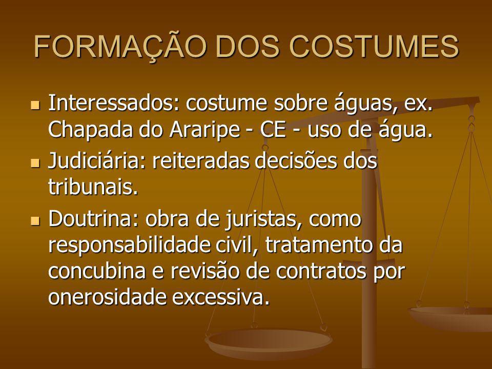 FORMAÇÃO DOS COSTUMES Interessados: costume sobre águas, ex. Chapada do Araripe - CE - uso de água.