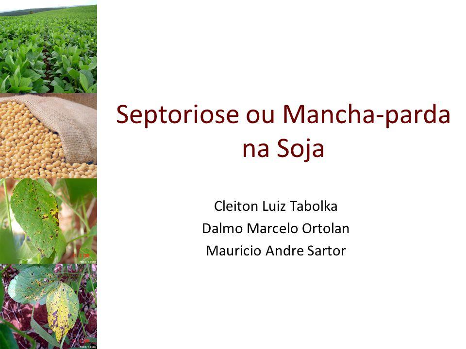 Septoriose ou Mancha-parda na Soja