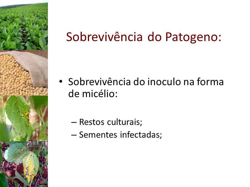 Sobrevivência do Patogeno: