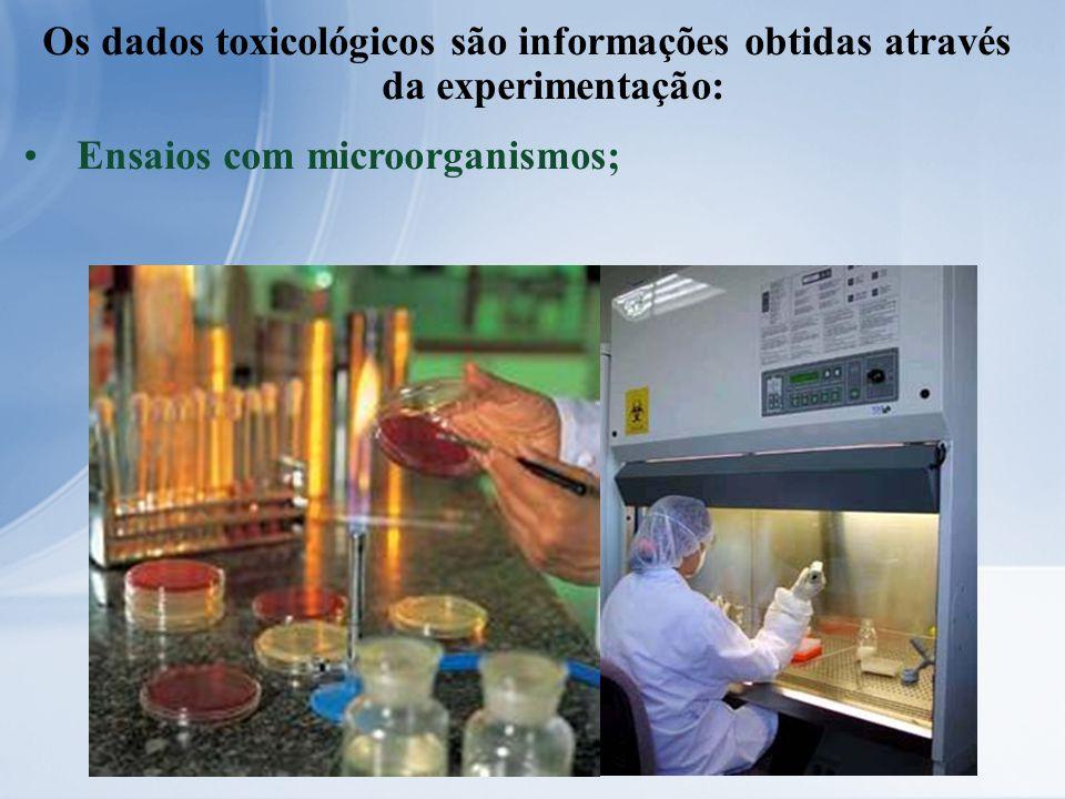 Os dados toxicológicos são informações obtidas através da experimentação: