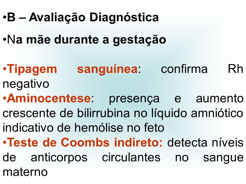 B – Avaliação Diagnóstica