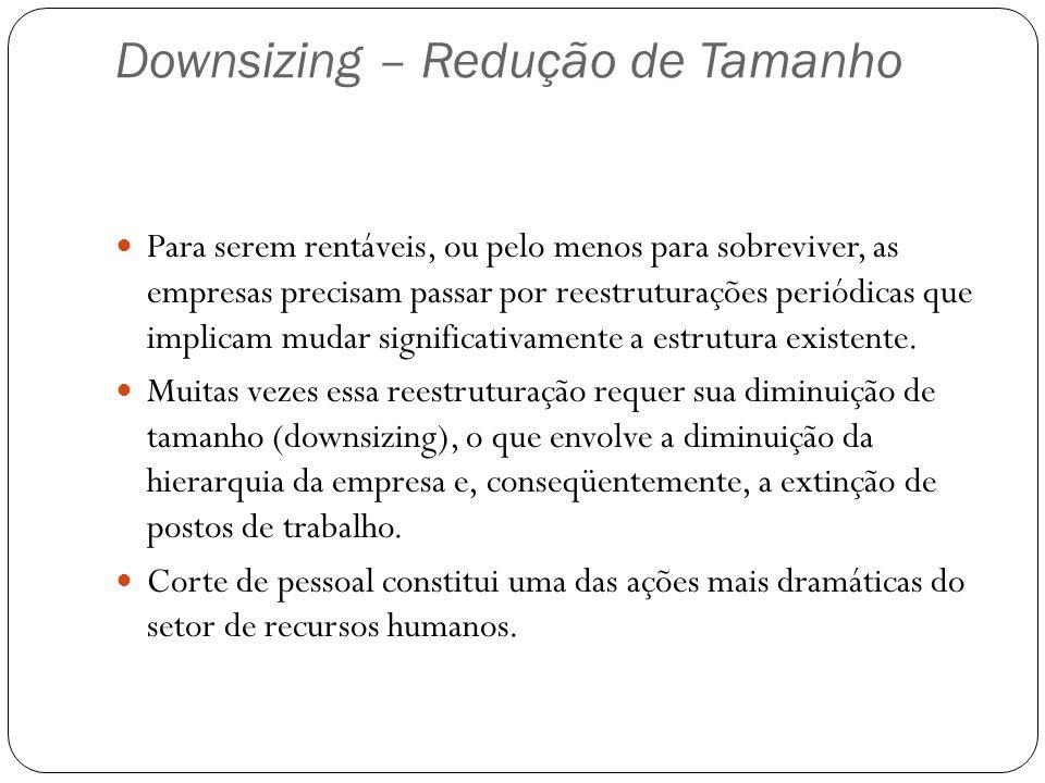 Downsizing – Redução de Tamanho
