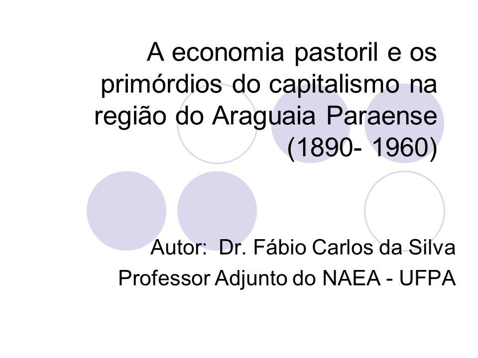 Autor: Dr. Fábio Carlos da Silva Professor Adjunto do NAEA - UFPA