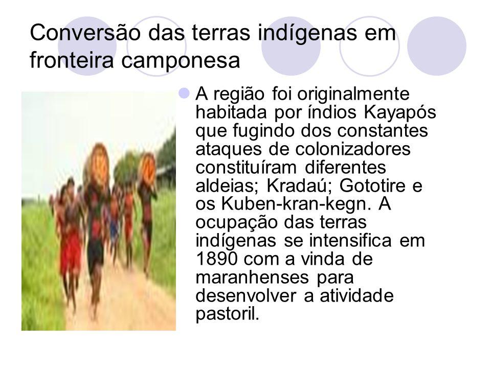 Conversão das terras indígenas em fronteira camponesa