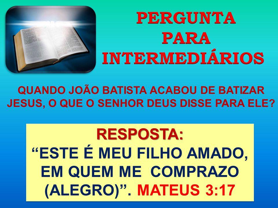 ESTE É MEU FILHO AMADO, EM QUEM ME COMPRAZO (ALEGRO) . MATEUS 3:17