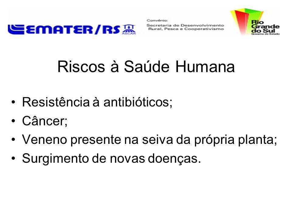 Riscos à Saúde Humana Resistência à antibióticos; Câncer;