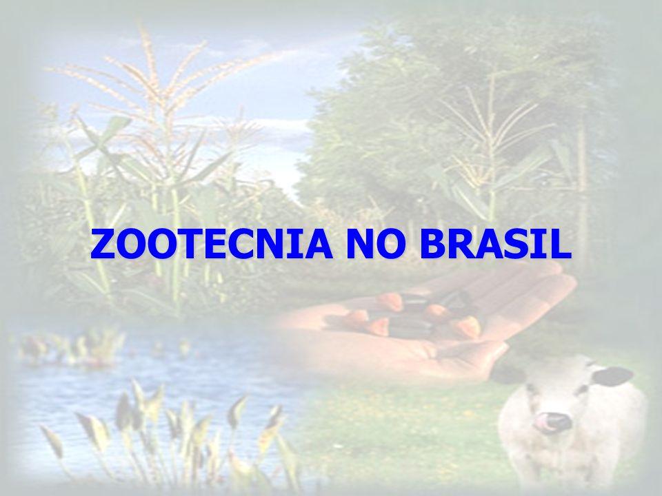 ZOOTECNIA NO BRASIL