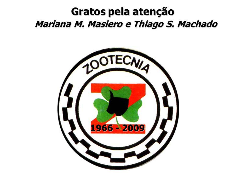 Mariana M. Masiero e Thiago S. Machado