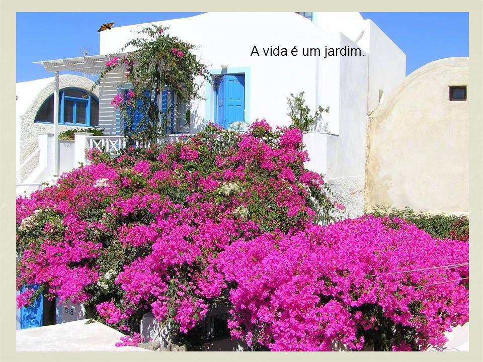 A vida é um jardim.