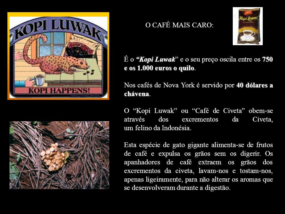 O CAFÉ MAIS CARO: É o Kopi Luwak e o seu preço oscila entre os 750 e os 1.000 euros o quilo.