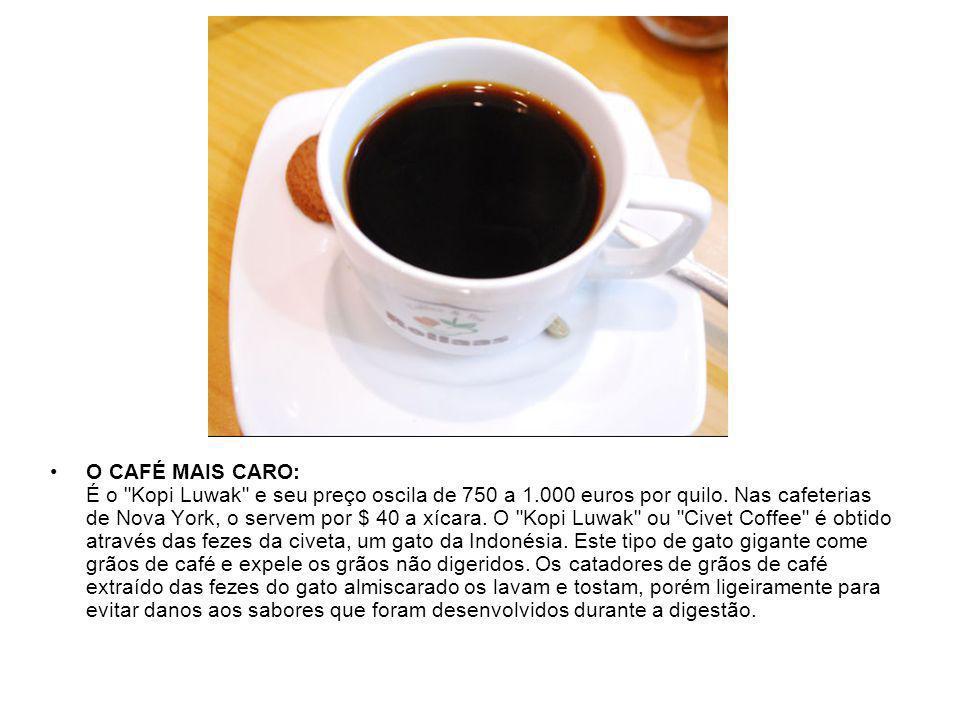 O CAFÉ MAIS CARO: É o Kopi Luwak e seu preço oscila de 750 a 1