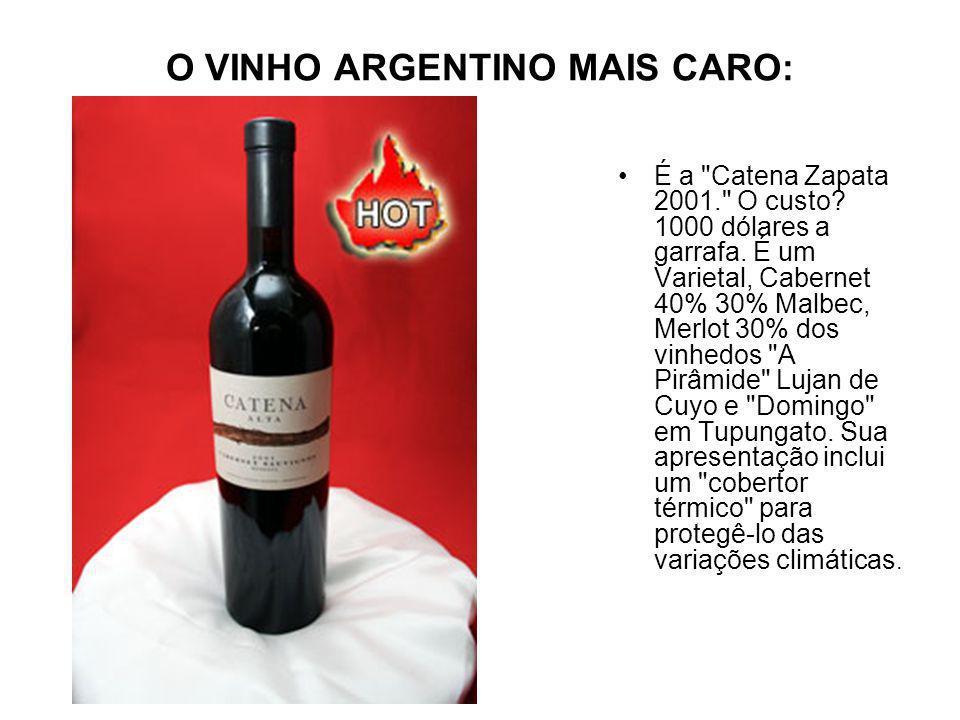 O VINHO ARGENTINO MAIS CARO:
