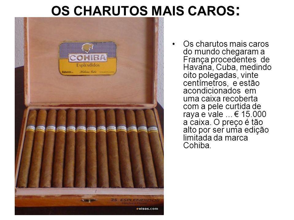 OS CHARUTOS MAIS CAROS: