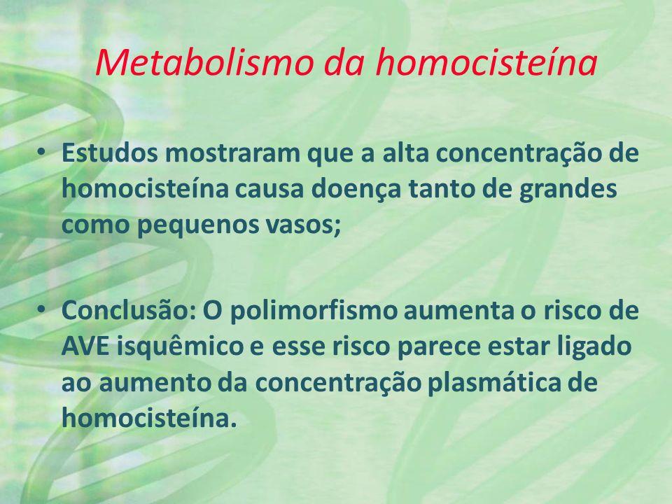 Metabolismo da homocisteína