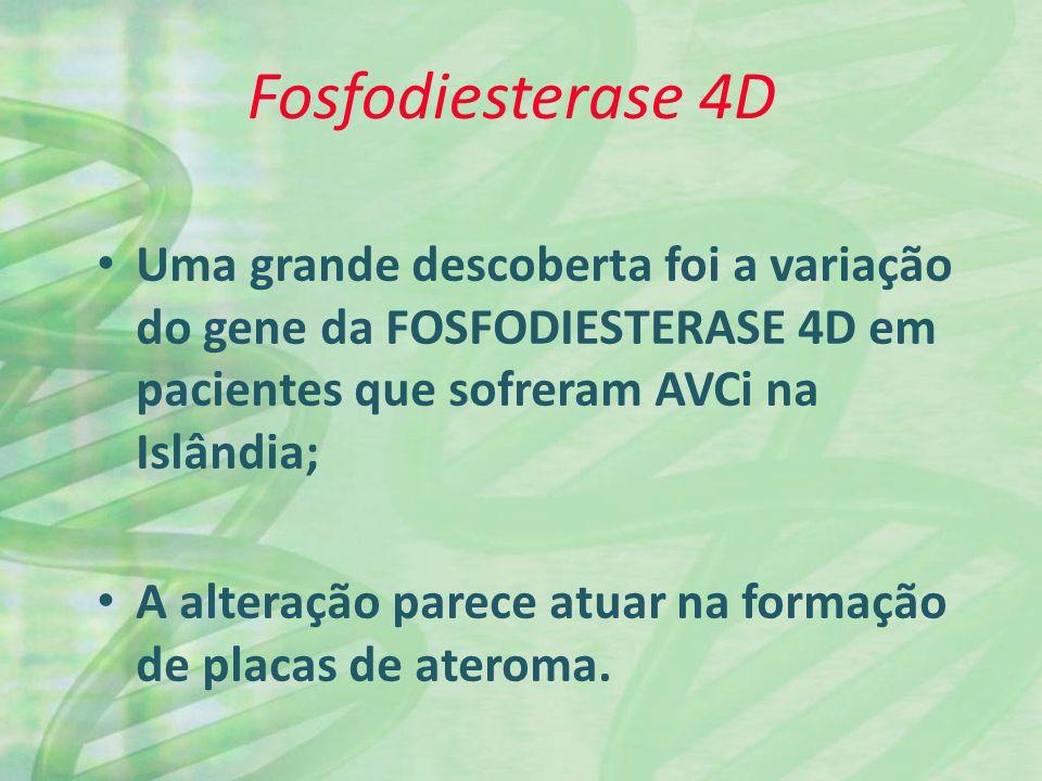 Fosfodiesterase 4D Uma grande descoberta foi a variação do gene da FOSFODIESTERASE 4D em pacientes que sofreram AVCi na Islândia;