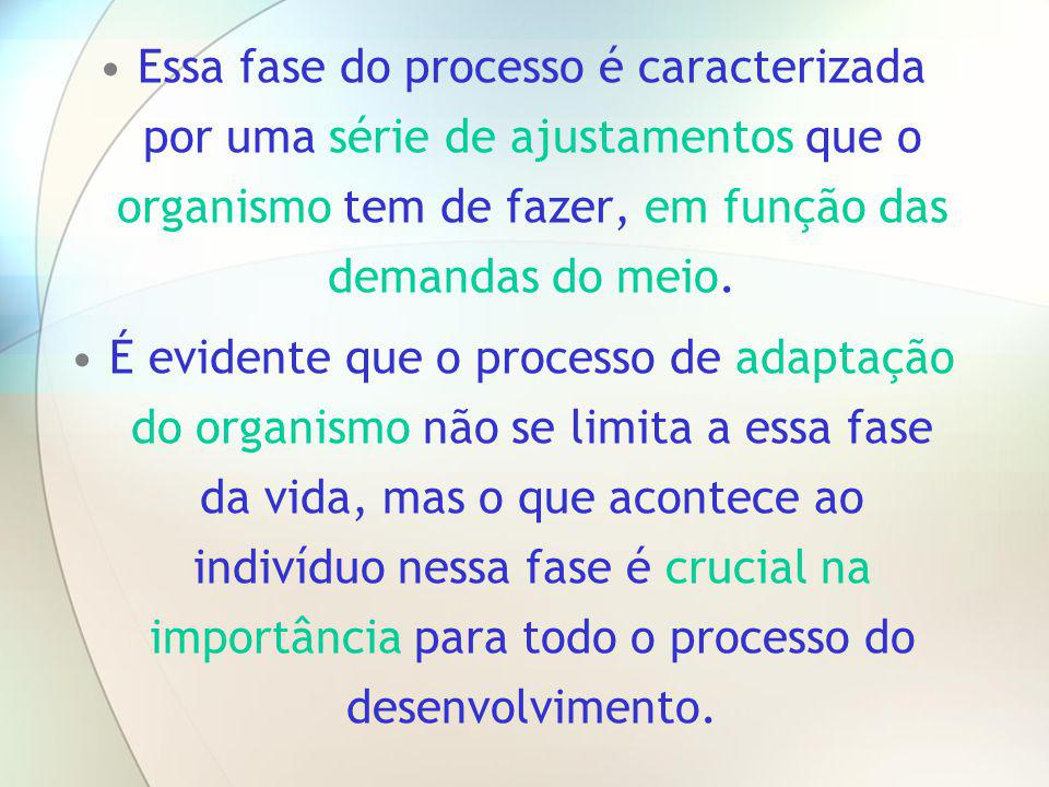 Essa fase do processo é caracterizada por uma série de ajustamentos que o organismo tem de fazer, em função das demandas do meio.