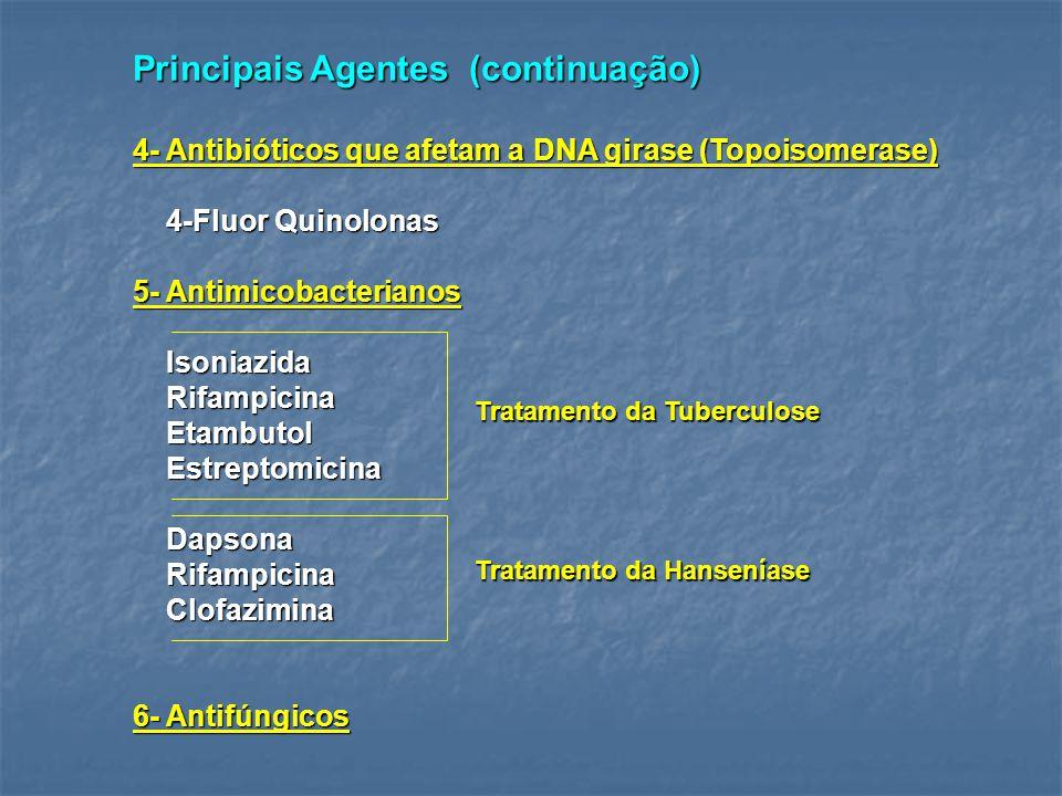 Principais Agentes (continuação)