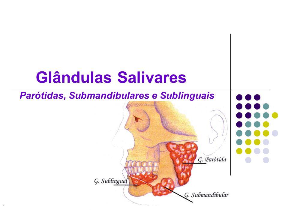 Glândulas Salivares Parótidas, Submandibulares e Sublinguais