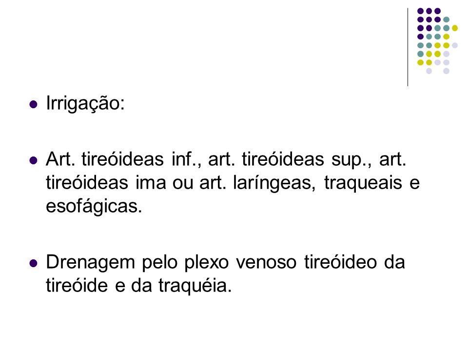 Irrigação: Art. tireóideas inf., art. tireóideas sup., art. tireóideas ima ou art. laríngeas, traqueais e esofágicas.