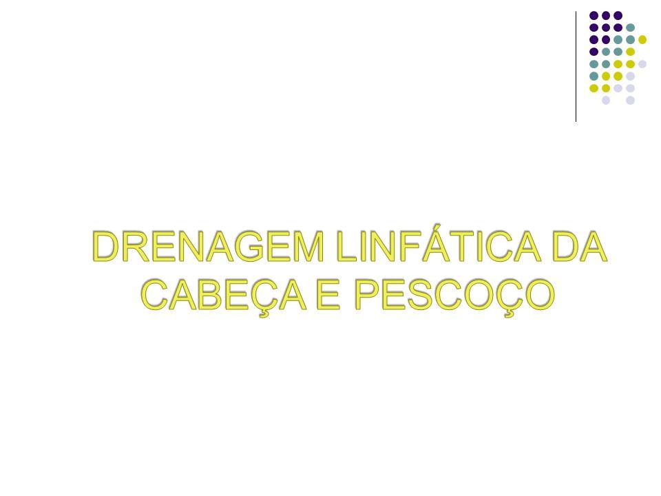 DRENAGEM LINFÁTICA DA CABEÇA E PESCOÇO