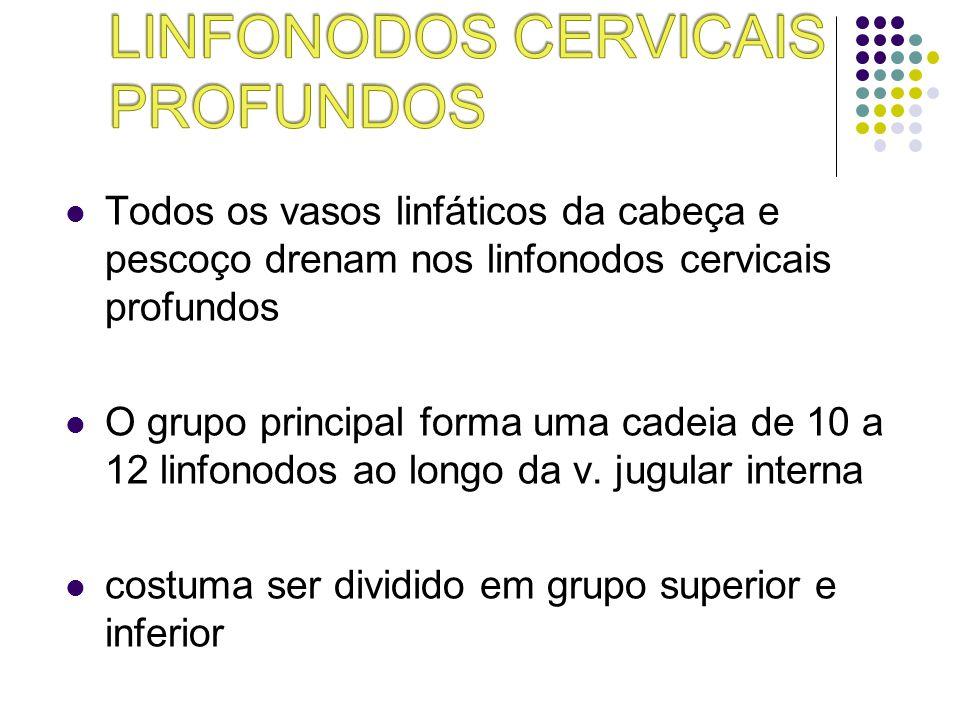 Linfonodos cervicais profundos